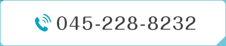 TEL:045-228-8232